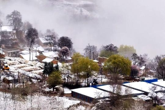 甘肃武山出现降雪 山川房顶被积雪覆盖宛如水墨画