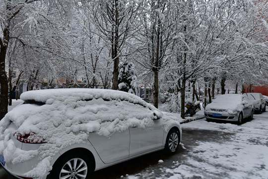 内蒙古呼伦贝尔四月飘雪 重现冬日景象