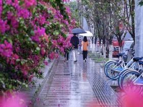雨水来袭!今夜起广东再迎一轮降水过程 韶关清远等地大雨倾盆