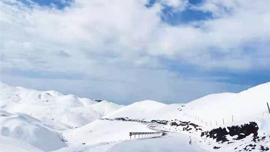 云南大海草山四月飞雪 一夜之间冷回冬季