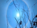 """全国多地出现日晕景观 太阳如戴""""美瞳"""""""