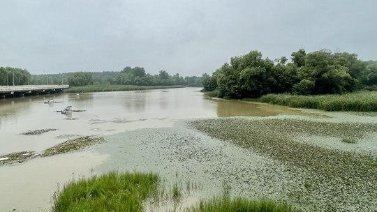 近日北京多降水 翠湖湿地水位上涨