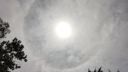 小惊喜!青岛天空现日晕+环地平弧景观