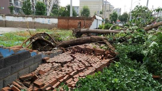 北京疾风骤雨过后墙倒树折 路面现明显积水