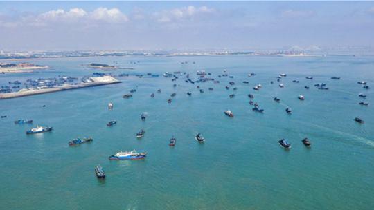 伏季休渔结束 福建石狮渔船出海