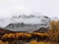 青海群加国家森林公园 云雾绕山层林尽染