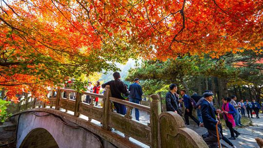 登高赏秋 感受祖国大美风光