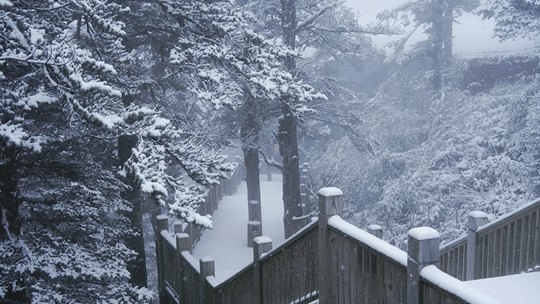 四川成都西岭雪山迎来今年下半年来初雪 一片银白世界