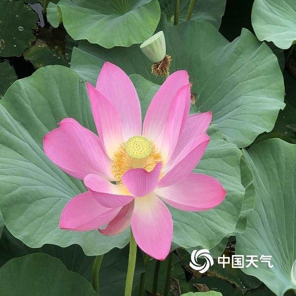 http://www.qwican.com/xiuxianlvyou/1336567.html