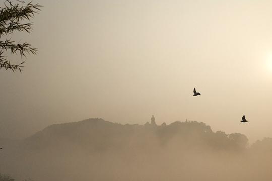 山城梧州大雾弥漫如仙境