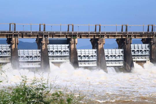 横县:西津坝开闸泄洪