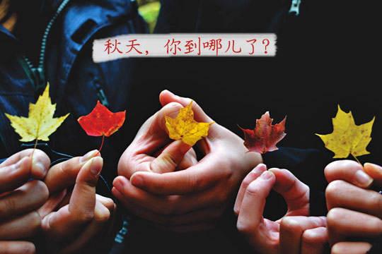 秋天,你到哪里了?