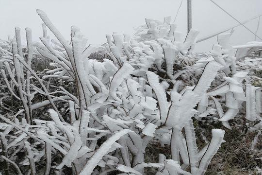 柳州:杆洞乡道路结冰