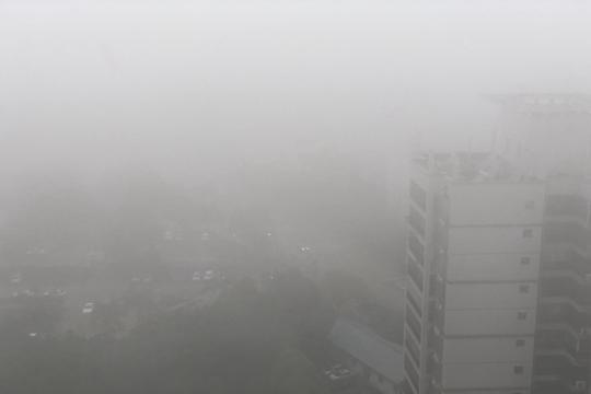 南宁市局地出现浓雾