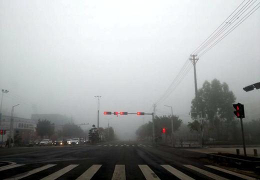 藤县清明假期大雾影响