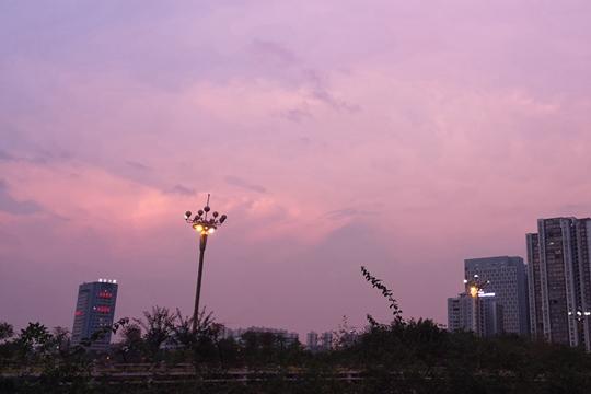 来宾:雨后晚霞粉灿灿