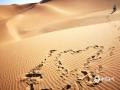 中国天气网讯 新疆鄯善县库木塔格沙漠被称为世界上离城市最近的沙漠,茫茫沙漠,只见沙黄天蓝,蔚为壮观。图为留下的足迹逐渐延伸向远方。(图/梁泽浩 文/苏庆红)