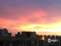 中国天气网广西站讯 6月11日傍晚时分,来宾市雨水停歇,天空出现绚丽的晚霞,蔚为壮观。(图/覃辉 文/苏庆红)