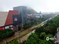 中国天气网广西站讯 昨天(12日)开始,桂林遭遇新一轮强降雨天气。截止到今天白天桂林市城区普降大暴雨、局地降雨量达到特大暴雨量级。市区多处内涝严重,解放桥下由于河水倒灌,积水最深达到一米,交通中断。此外,普陀路、万福路、会仙路等部分路段积水严重。(图/赵楠 文/胡静)