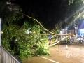 中国天气网广西站讯 7月19日晚,凭祥城区遭到短时雷雨大风袭击,市区半小时最大雨强达29.9毫米,最大风速达14.7米/秒。市区多处路段绿化树木被连根拔起,部分电线杆、路边停放车辆被风刮倒,凭祥市第一时间组织住建、市政,交警等相关职能部门,连夜对市区开展清障工作,确保道路安全畅通,19日23时起风力减小,降雨停止,积水逐渐消退,城区受灾路段清障完毕,恢复通行。(图/蒋洪涛  吕晶莹   文/陈燕坤)