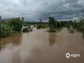 """中国天气网大通彩票注册站讯 8月2日至3日,受台风""""韦帕""""影响,崇左宁明出现大雨到暴雨,局部大暴雨,并伴有7~8级阵风的天气。明江宁明县城河段出现超警戒水位,河水漫过河道两边的路面,县城内部分树木被大风吹倒,一条出城道路被洪水冲毁。(文/陆小晓 图/马海华)"""