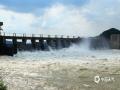 中国天气网广西站讯 8月4日,横县西津水库开闸泄洪,滔滔江水经溢流孔飞泻而下,坝底惊涛翻滚,激荡有声,一时珠雾迷空,气势十分雄伟壮观。  据了解,入汛以来,横县历经了多次强降雨的影响。气象数据显示,7月1日一8月4日,横县累计降水量539.2mm,与历史同期282.4mm相比,雨量大幅度增加,邕江水横县河段水位大涨,及时泄洪可有效缓解库容压力,确保防洪排涝安全。(图/卜军波 文/黄庆平)