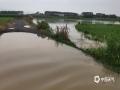 中国天气网站讯 8月11日清晨六点,还在睡梦中的武宣市民被一声声雷鸣惊醒,醒来时窗外已经是一片噼里啪啦的下雨声。这场大雨持续到上午10时,雨势汹汹导致很多地势低洼的地方出现积水,农田被淹,景观湖水上涨,给市民的出行造成了极大不便。据气象部门观测数据显示,达到暴雨级别的乡镇共有八个,其中最大雨量出现在武宣县三里镇,154毫米。(图/黄敏升 文/陈凤梅)