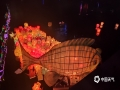 中国天气网广西站讯 8月10-14日,桂林市资源县第二十五届河灯歌节暨第八届丹霞文化旅游节河灯漂放活动在资江边举行。14日当晚,万盏河灯漂资江的盛况将活动推向高潮,25分钟内集中漂放16800盏河灯,一时恍如银河仙境坠入资江。不少市民游客参与其中,共同祈福祝愿。(文/胡静 图/罗绍林)