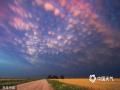"""2014年11月24日消息(具体拍摄时间不详),美国内布拉斯加州的风暴追逐者Mike Hollingshead在自己的家乡拍到了长达100英里(约合160公里)的泡沫状云彩。日落时分,数百球形云朵铺满天际,在夕阳的映照下美不胜收。据了解,这种云彩被称为""""乳状云"""",是雷暴天气过后才能出现的罕见的云朵。(chinafotopress/版权图片 来源视觉中国)"""