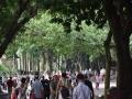 广西新闻网南宁9月13日讯(记者 潘晓明 实习生 尚天宇)9月13日是中秋小长假首日,到南宁市多个景区游玩的游客市民络绎不绝。优良的空气、秀美的风景和晴好的天气,吸引了不少游客市民到南宁市多个景区游玩,景区内人流如织,秩序井然。