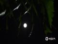 中国天气网广西站讯 2019年中秋佳节,广西百色市那坡县晴空万里,皓月当空。(图文/谭金闪)