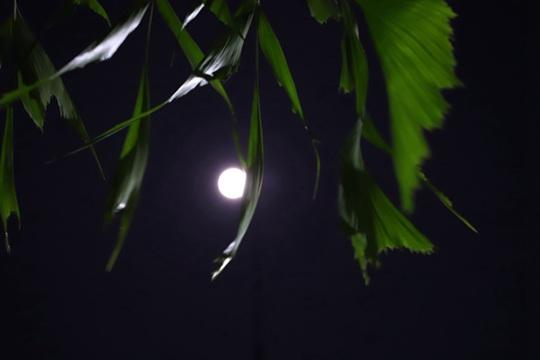 那坡中秋圆月皎洁当空