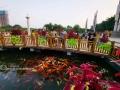 """""""十一""""黄金周期间,广西壮族自治区乡村生态游火爆,从来宾市武宣县的千亩油葵花海到南宁市上林县的大龙湖畔,再到柳州市生态花海,到处是如织的游客,乡村生态游成了""""十一""""黄金周众多游客首选的旅游方式。图为10月5日,游客在柳州市生态花海景区游玩。(图文/高东风)"""
