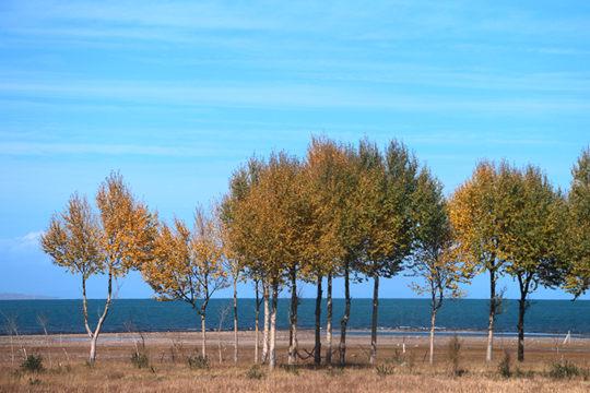 青海湖:深秋蓝天碧水