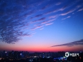 中国天气网广西站讯 12月4日傍晚,来宾市上空的晚霞迷人,云朵一会儿排列整齐,一会儿又像团团棉花,天空的色彩也是精彩纷呈,变化多样,吸引了不少市民驻足拍照。(图/黄乔婧 文/苏庆红)