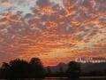 广西新闻网全州12月6日讯(通讯员唐广东)12月4日,广西桂林市全州县上空出现绚丽火烧云景观,美不胜收。火烧云是指日出或日落时出现的赤色云霞,是大气变化的现象之一。火烧云属于低云类。太阳刚刚出来的时候,或者傍晚太阳快要落山的时候,天边的云彩常常是通红的一片,像火烧的一样,所以叫火烧云。