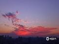 """中国天气网广西站讯 12月8日,来宾出现艳丽的""""火烧云""""美景,天空的云在夕阳的映照下变得色彩斑斓,极其好看!(图/黄乔靖 文/苏庆红)"""