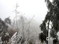 中国天气网讯 在冷空气的影响下,广西桂林资源金紫山出现了大规模的雾凇,花草树木被冰封成了如水墨画一般的冰雪世界。预计未来二天资源仍然持续低温阴雨天气,高寒山区仍然会出现雾凇美景,并且会有道路结冰,请公众在欣赏美景时,务必要注意交通安全。(图文/李岩)