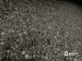 中国天气网广西站讯 2020年1月24日(除夕)下午到晚上,广西南宁、百色、河池、崇左等市多地出现2020年以来的首场冰雹天气。图为24日19时30分左右,南宁市隆安县都结社区上雕屯出现的冰雹。(文/周玉 杨少秋 黄丹虹 黄凌燕 林金红 图/张家富 黄丹虹 农雄涛 黄凌燕 林金红)