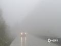中国天气网广西站讯 今天(2月2日)早晨,广西百色市的隆林、平果、凌云等县城及周边部分地区出现了大雾天气,局部能见度不足100米,路上车辆都开着雾灯和双闪及大灯,小心驾驶。(图/杨少秋)