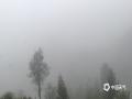 中国天气网广西站讯 今天(2月2日)早晨,广西百色市的隆林、平果、凌云等县城及周边部分地区出现了大雾天气,局部最低能见度不足100米,路上车辆都开着雾灯和双闪及大灯,小心驾驶。(图/杨少秋)