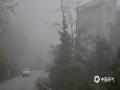 中国天气网广西站讯 今天(2月2日)早晨,广西百色市的隆林、平果、凌云等县城及周边部分地区出现了大雾天气,局部最低能见度不足100米,路上车辆都开着雾灯和双闪及大灯,小心驾驶。(图/尹华军)