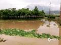中国天气网广西站讯 3月27日10时开始,受高空槽和偏南暖湿气流共同影响,昭平县出现强降雨天气。富罗、北陀、马江等乡镇出现暴雨,其中北陀镇1小时降水达59.4毫米。强降雨造成多处公路塌方,河水暴涨,农田被淹,街道内涝,道路积水,出行受阻。(图/吴宝柱 文/吴健杰)