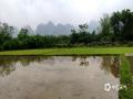 中国天气网广西站讯 过去一周,河池市多阴雨天气,对农事活动影响较大。今天(5日),强降雨天气暂时告一段落,都安县澄江镇桑里村的村民们纷纷走上田间地头开始春耕劳作,村民表示,要赶紧趁着不下雨的时间把今年的春种任务完成。据河池市气象台预报,未来2天,该市大部地区有阵雨。(文/覃弼勇 图/黄冬梅 )