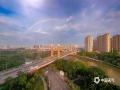 图为彩虹的出现映衬得城市的清晨更加清新。(图/李斌喜 文/韦嘉铭)