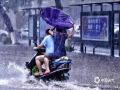 中国天气网广西站讯 今天(25日)开启端午假期,广西龙舟水猛。昨天白天到今天早上,桂中和桂东北的大部地区有暴雨到大暴雨,局部特大暴雨,我区其它地区有小到中雨、局部暴雨。百色、钦州、贵港、柳州等多地河水上涨,内涝严重,行车如行舟。图为:由于降雨强度大,强降雨持续时间长,降雨落区集中,钦州城区出现严重内涝。市民雨中出行。(文/黄维明 图/李斌喜)