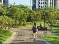 """近日,漫步邕江近江公园,江边的芦苇已经染上了秋日的金黄。秋高气爽,随手一拍,就是壮观的""""秋日大片""""。图为身穿球衣在公园里行走的市民。(图文/洪妦源)"""