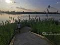 """近日,漫步邕江近江公园,江边的芦苇已经染上了秋日的金黄。秋高气爽,随手一拍,就是壮观的""""秋日大片""""。图为游客正在拍摄邕江美景。(图文/洪妦源)"""