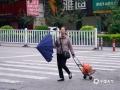 图为14日上午,钦州市民备伞出行。(图/李斌喜)