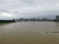 图为16日16时,邕江水位持续上涨。(图/陈丽婕)
